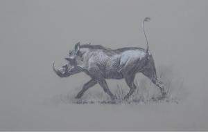 Warthog/ Images/Paintings/Art Warzenschwein/ Kunst/ Bild/ Gemälde